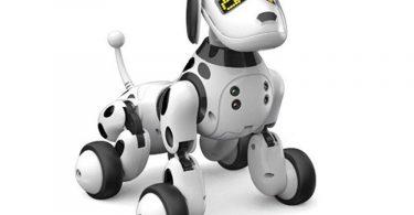 Robot chien-image